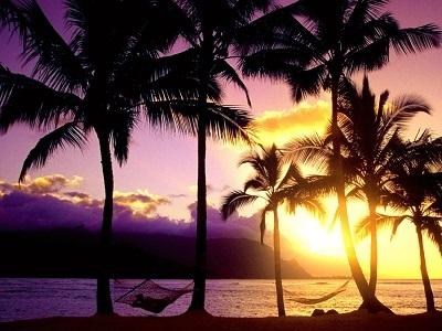 ハワイ2.jpg
