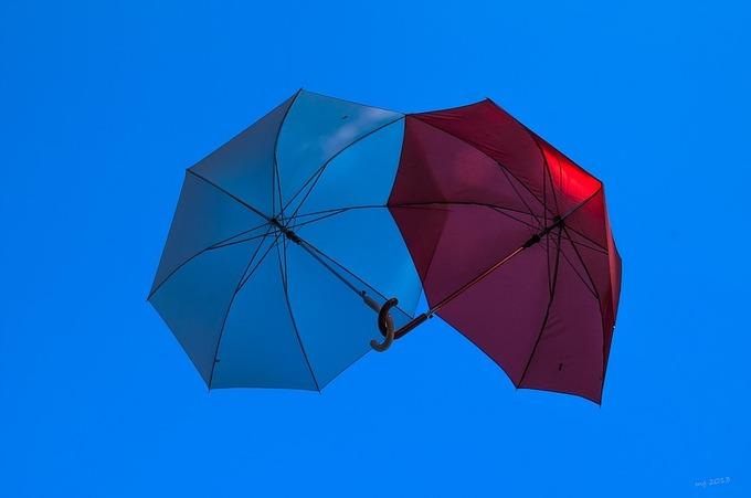 ブログ用 傘.jpg