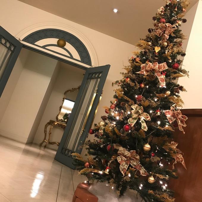 12月クリスマスツリー.jpeg